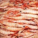 Recetas de comida típica de Huelva.