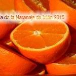 Día de la Naranja de Istán 2015