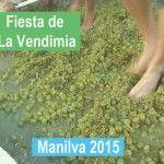 Fiesta de la Vendimia en Manilva