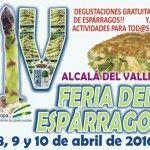 Feria del Esparrago Alcalá del Valle 2016