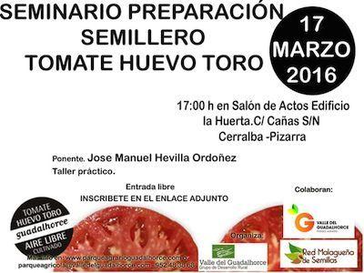 Aprende a cultivar tomates huevo de Toro