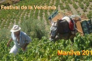 Festival de la Vendimia de Manilva 2016