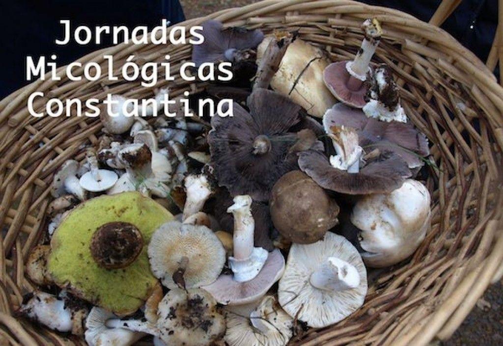 Jornadas Micológicas Constantina