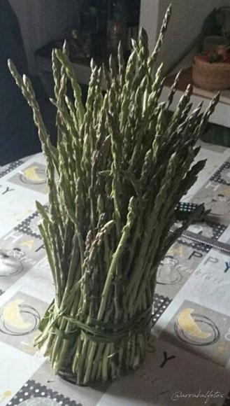 Manojo de espárragos verdes de campo para hacer una buena Sopa de espárragos casera como hacían nuestras abuelas
