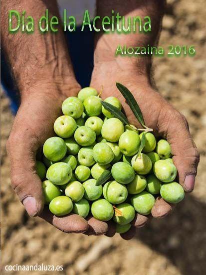 Día de la Aceituna de Alozaina 2016