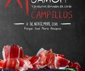 Cartel XI Feria del Jamón y productos derivados del cerdoI